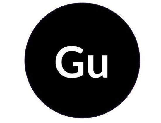 Gu Interim Management